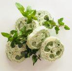 Mint Loofah
